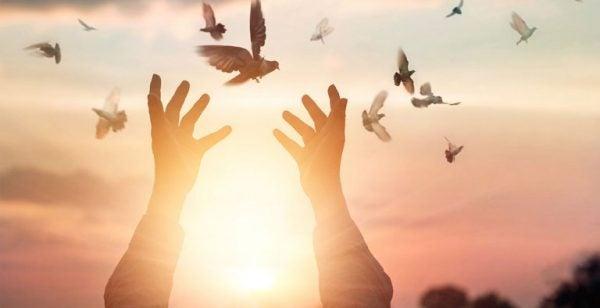 açık eller güneş