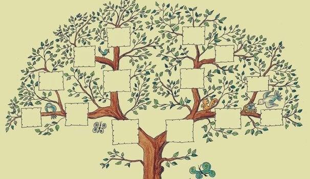 aile ağacı çizimi