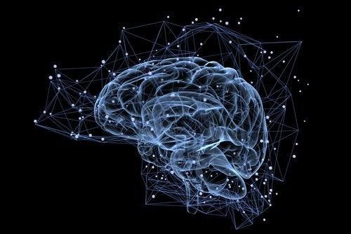 ayrıntılı beyin görseli
