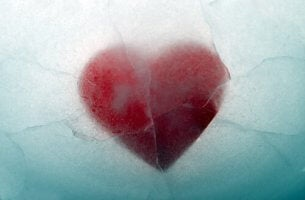 donmuş kalp