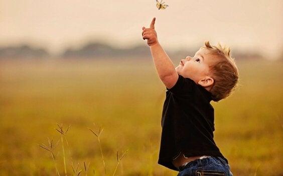 çocuk kelebek ile oynuyor