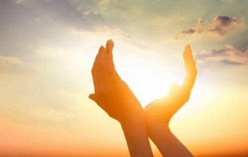 güneş ışığını tutmaya çalışan eller
