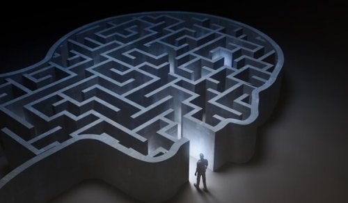 insan kafası şeklinde labirent