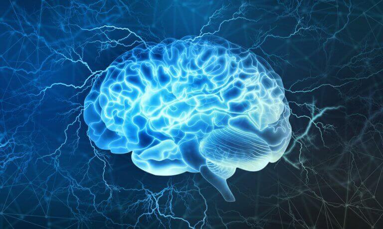 beyin uyku apnesi