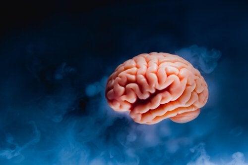 karanlık arkaplan beyin