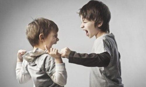 kavga eden erkek kardeşler