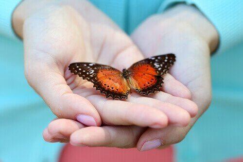 avuç içinde kelebek