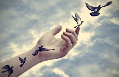 kuş dövmesi kuşlar el