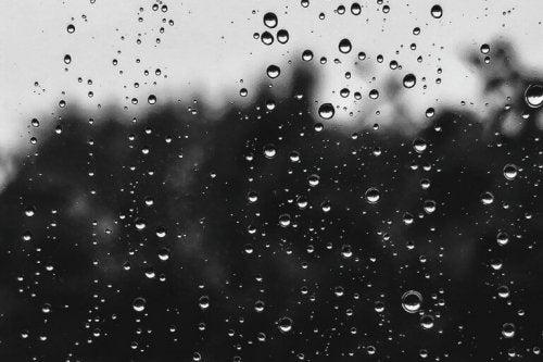 yağmur damlalı cam