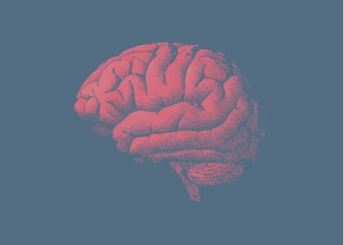 Beyniniz Neden Yaşlanır? Cevabı Genlerinizde Saklı