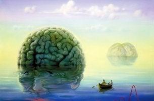 denize açılmış beyin