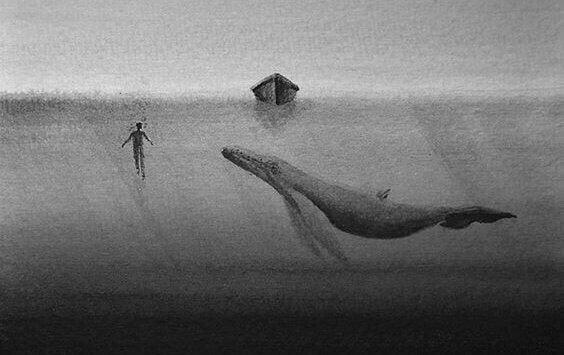 küçük bir sal altında yüzen balina ve duyarsızlık