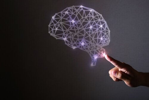 pembe neon ışıklardan yapılmış beyin ve ona dokunan parmak