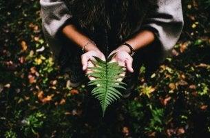 yaprak tutan kadın