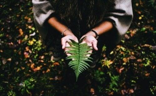 Hayatta Anlam Bulmak Huzur ve Sabır İster