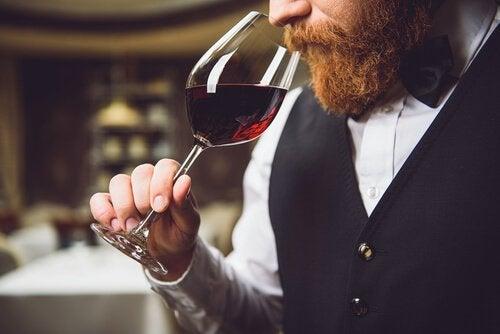 şarap ve hiferozmi