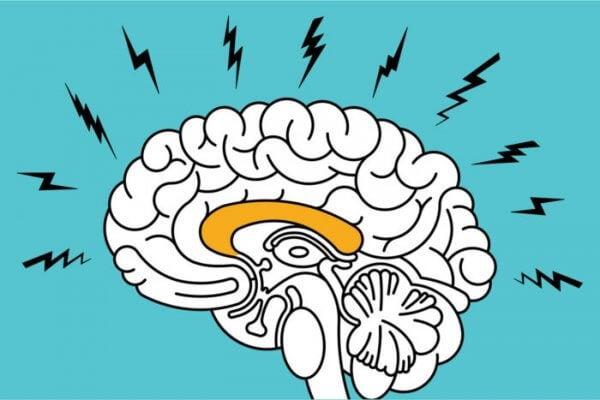 Anksiyete bozukluğu bulunan beyin