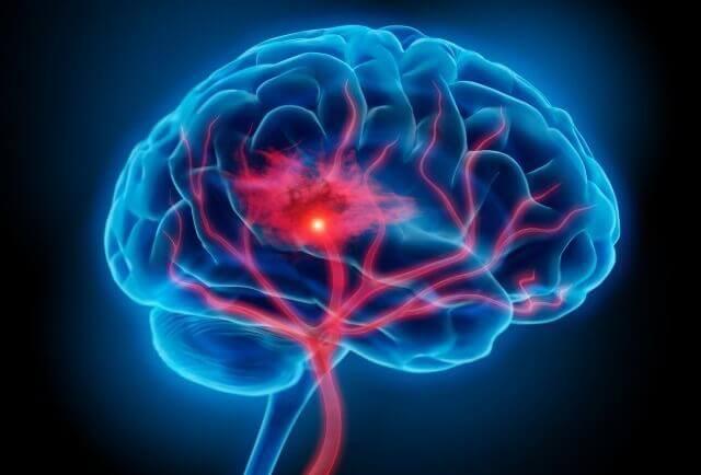 Işıklandırılmış beyin