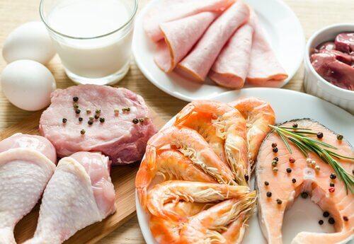 Triptofan içerikli besin maddeleri