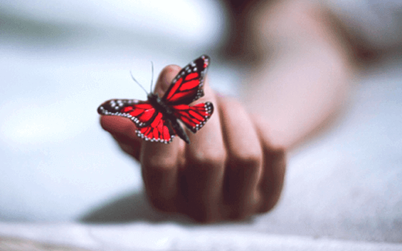 Depresyonu Atlatmanıza Yardımcı Olacak 7 Kitap
