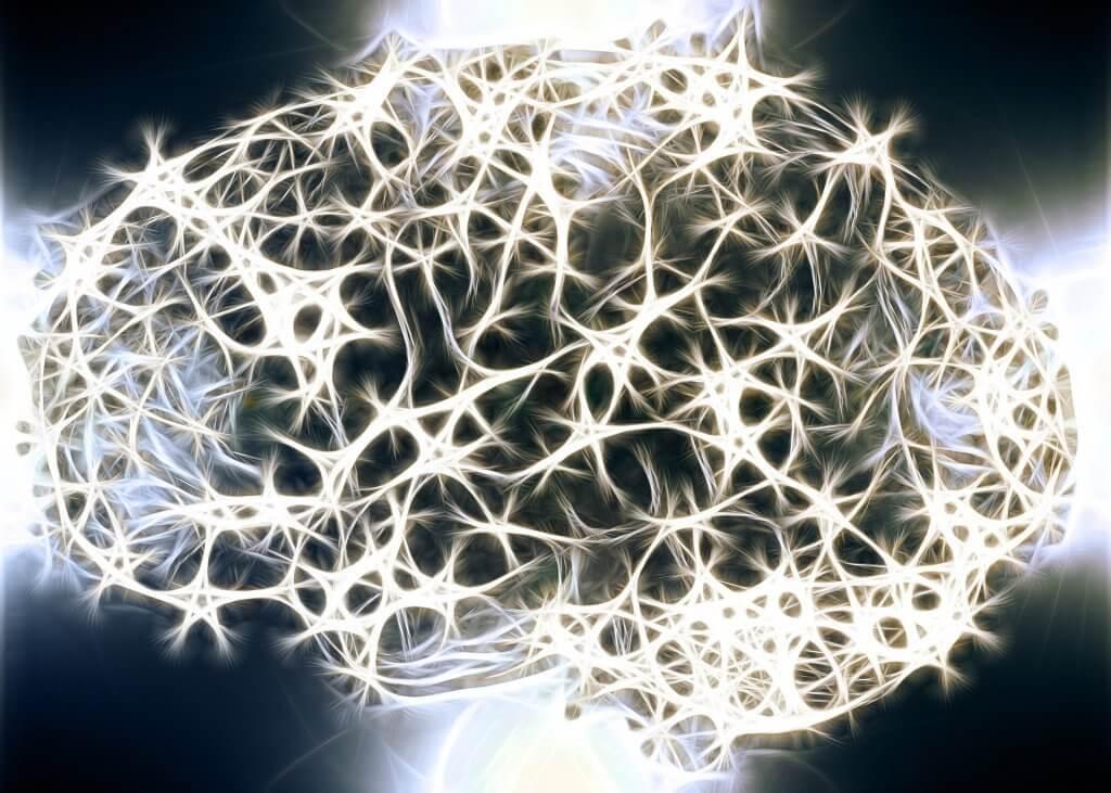 Sinir Sistemimizdeki Beyaz Maddenin Neden Çok Önemli Olduğunu Biliyor Musunuz?