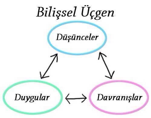 bilişsel üçgen