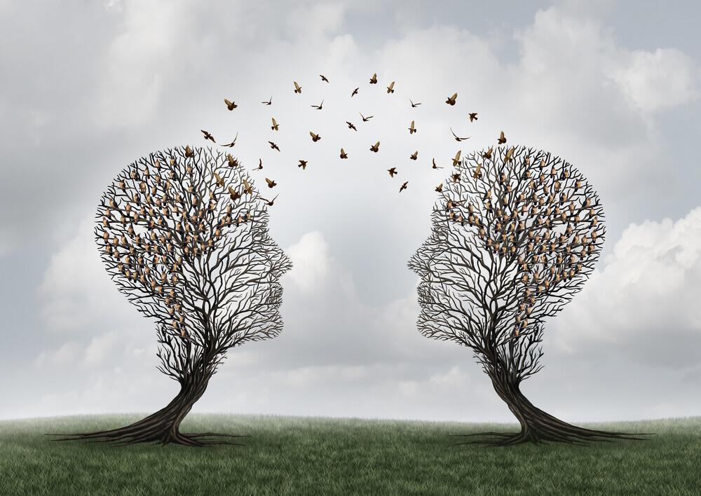 insan kafası şeklinde iki ağaç
