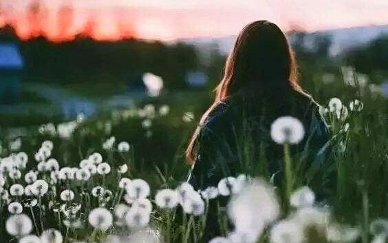 kadın beyaz çiçek tarlasında