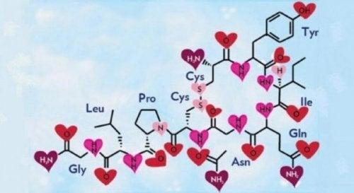 kimyasal yapı