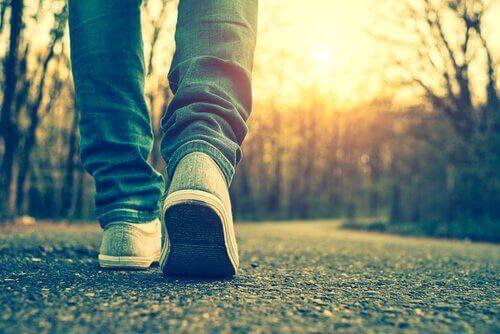 yürüyen ayaklar orman