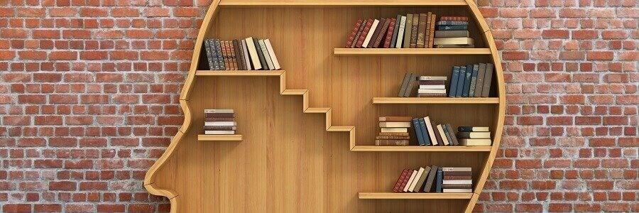 kafa şeklinde kitaplık