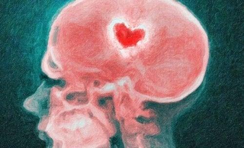 Ayrılık Esnasında Beyin: Kırık Kalp Bilimi