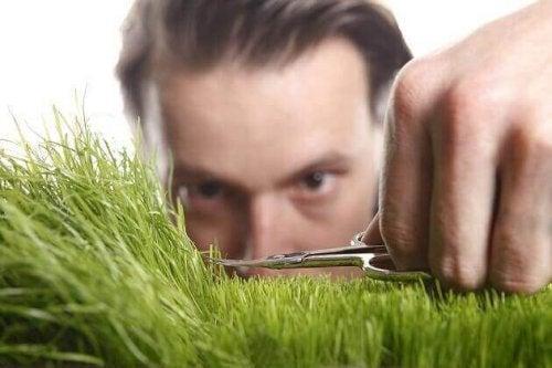 çimeni kesen adam obsesif