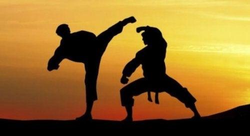 dövüşen adamlar