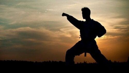 günbatımında dövüş sanatı yapan adam