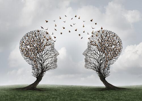 Sosyal Biliş Ne Demektir?