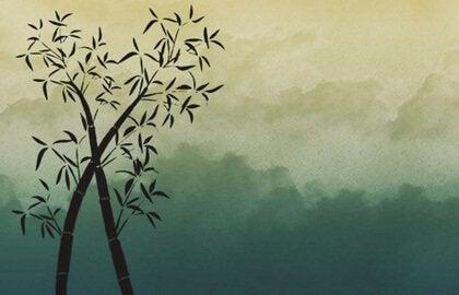 Bambu Gibi Olmak: Sabırlı, Güçlü ve Esnek
