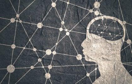 beyin ve ortak noktalar