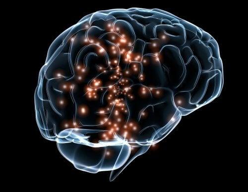 renkli insan beyni