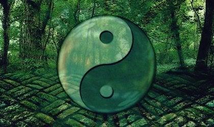 Laozi ve Gelişime Yardımcı 7 Alıntı