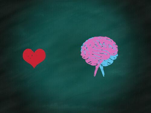 bir kalp ve beyin