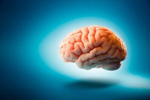 mavi üzerine beyin çizimi