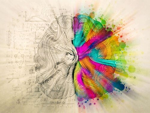 renkli ve karışık beyin
