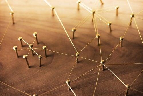 Sosyal Bilimler Ve Davranışı Anlamanın 4 Yolu