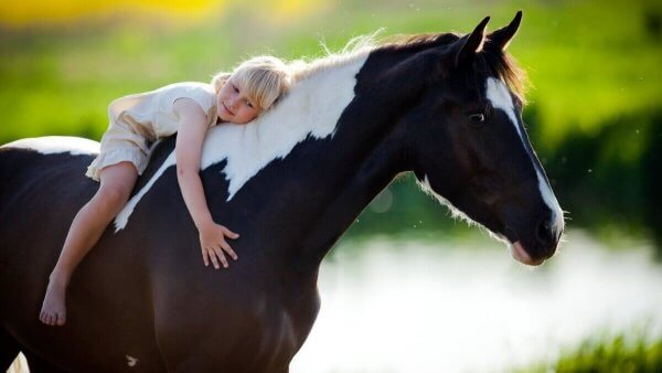 at üstünde kız