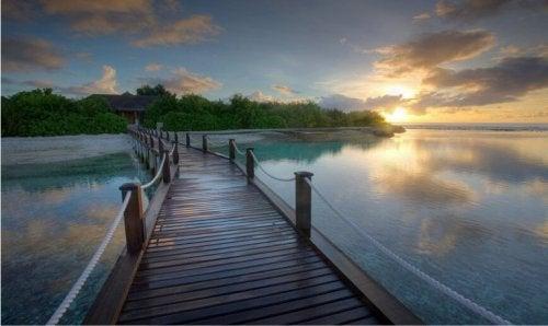gün batımında ahşap köprü