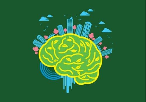 Nöromimari: Çevrenin Beyin Üzerindeki Gücü