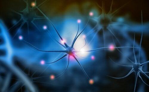 nöron ilüstrasyonu