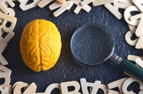 Deneysel Psikoloji Nedir?