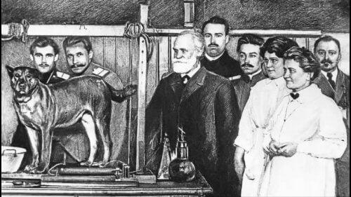 Pavlov'un köpek deneyi